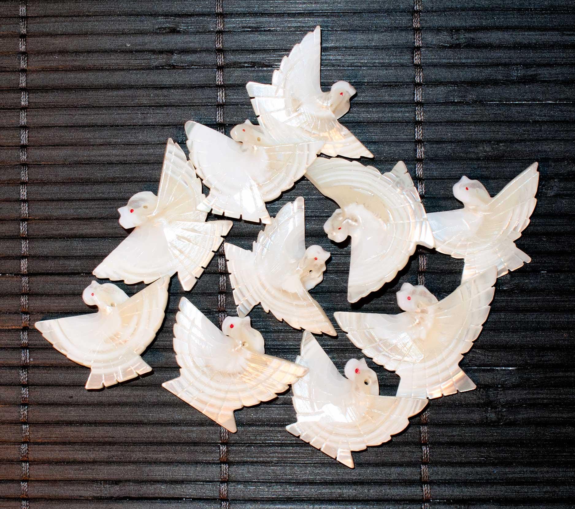 Abalone Birds