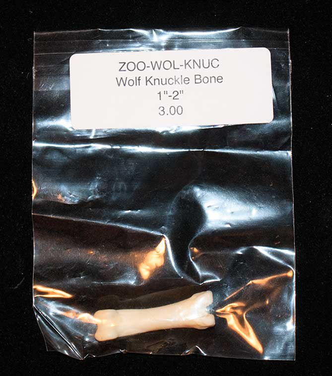 Wolf bone for a bone reading set