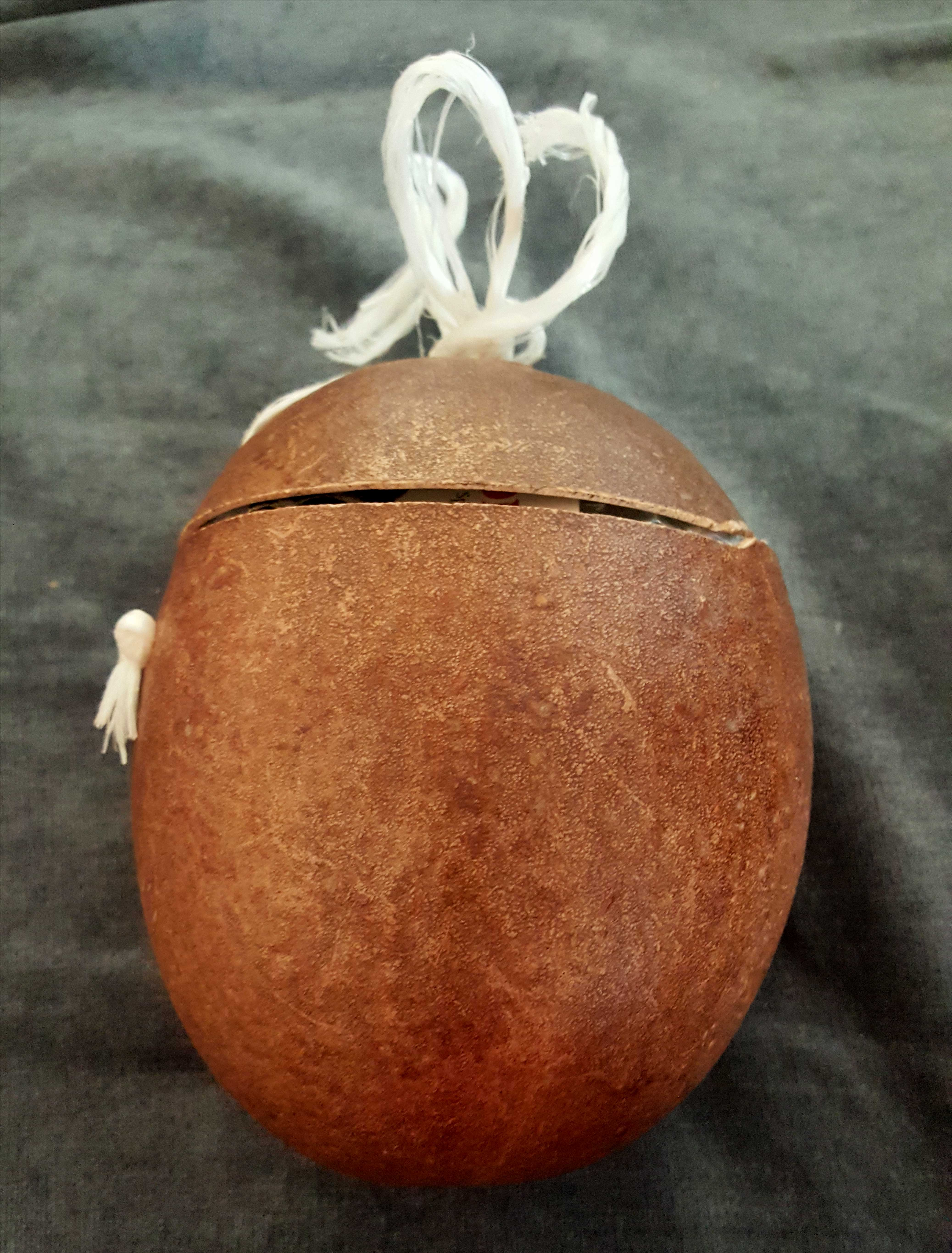 The coconut shell container can be used to store your bones when not in use.