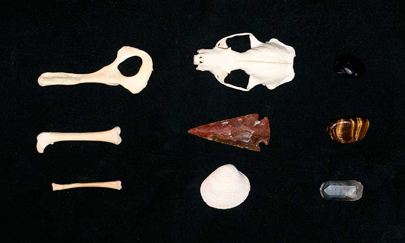 "Medicine Bone Set that I put together based on the booklet ""Casting Medicine Bones."""