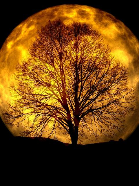 moon-165487_640 (1)