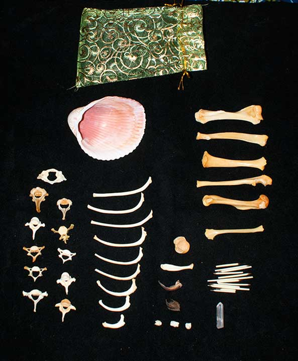 Oracle Bone Set - All Porcupine Bones