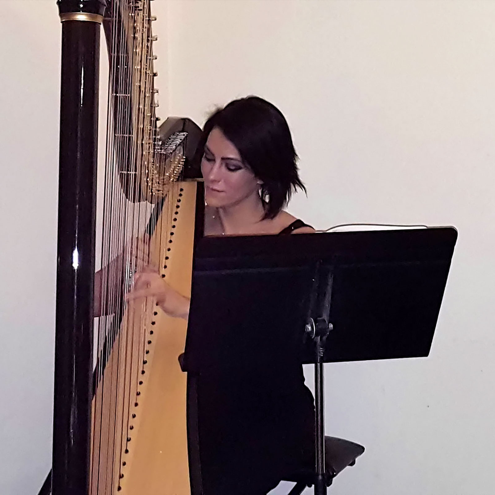 We were entertained by a harpist during the Dinner for the Dead photo by Candelo Kimbisa