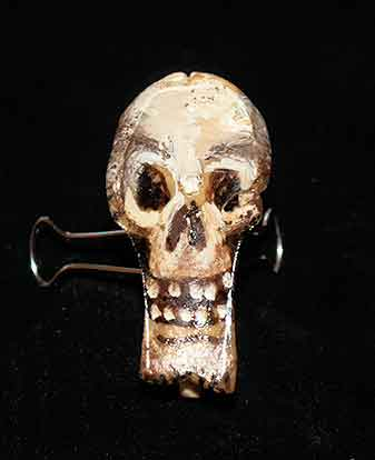This skull is one of my favorite pieces. It is held up with a paper clamp so that the front can be seen.