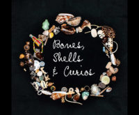 Bones, Shells, and Curios Logo
