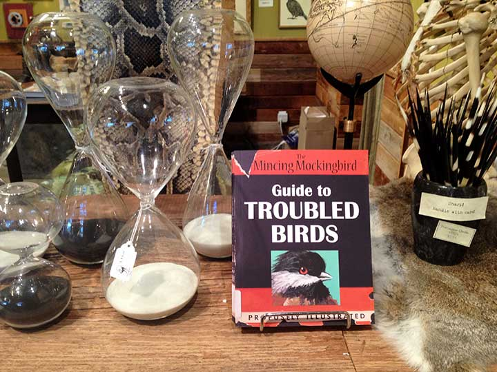 The Mincing Mockingbird Guide to Troubled Birds.