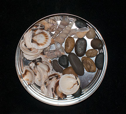 Some stones and shells from the dollar store. A variety of shells and stones can expand your set easily. Not everyone lives near a body of water and the dollar store is less expensive than ebay and other online sources