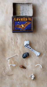 Bone divination set by wheat and chaff on Etsy
